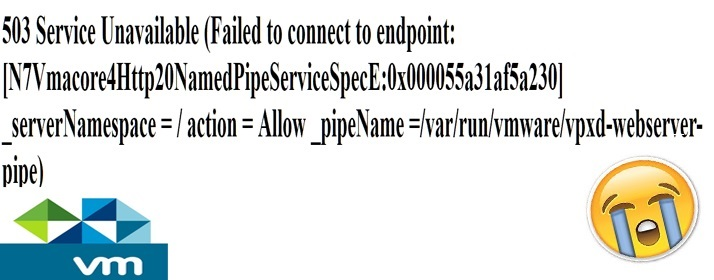Troubleshooting-vCenter-error-503-Service